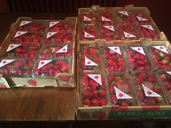 Flats of Strawberries bought on clearance will save my money all year!