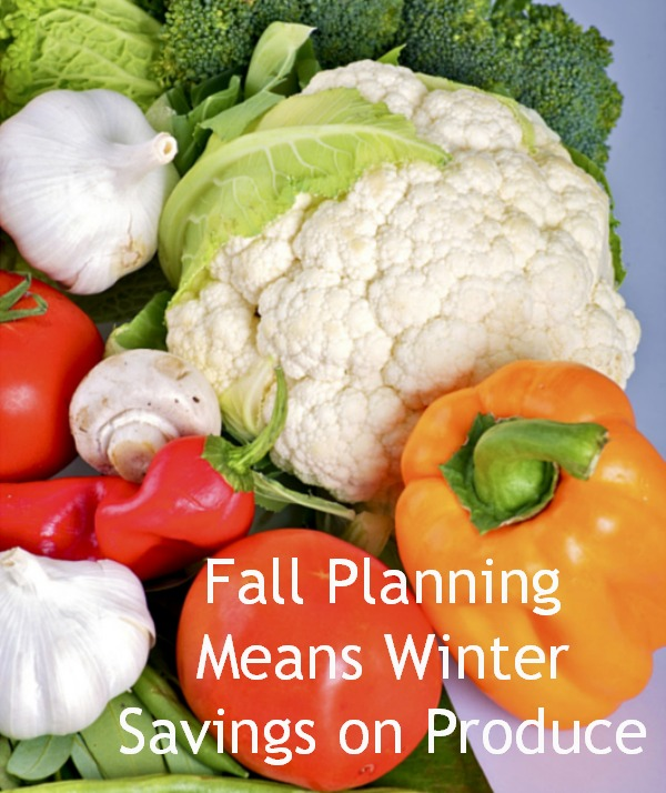 Fall Plannng Means Winter Savings on Produce