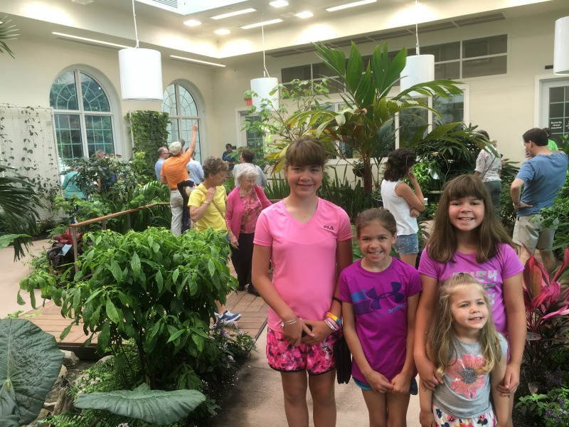 Inside the Butterfly Atrium at the Hershey Gardens #SweetestMoms #partner